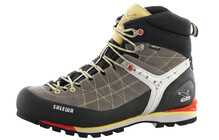 Salewa Men's Rapace GTX grey/yellow